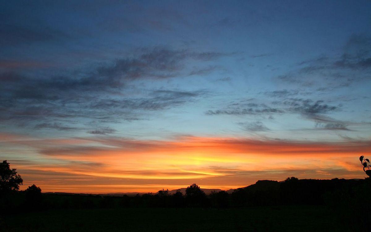 Фото бесплатно вечер, деревья, мокушки, небо, закат, облака, пейзажи