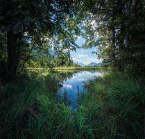 Заставки озеро, водоём, деревья
