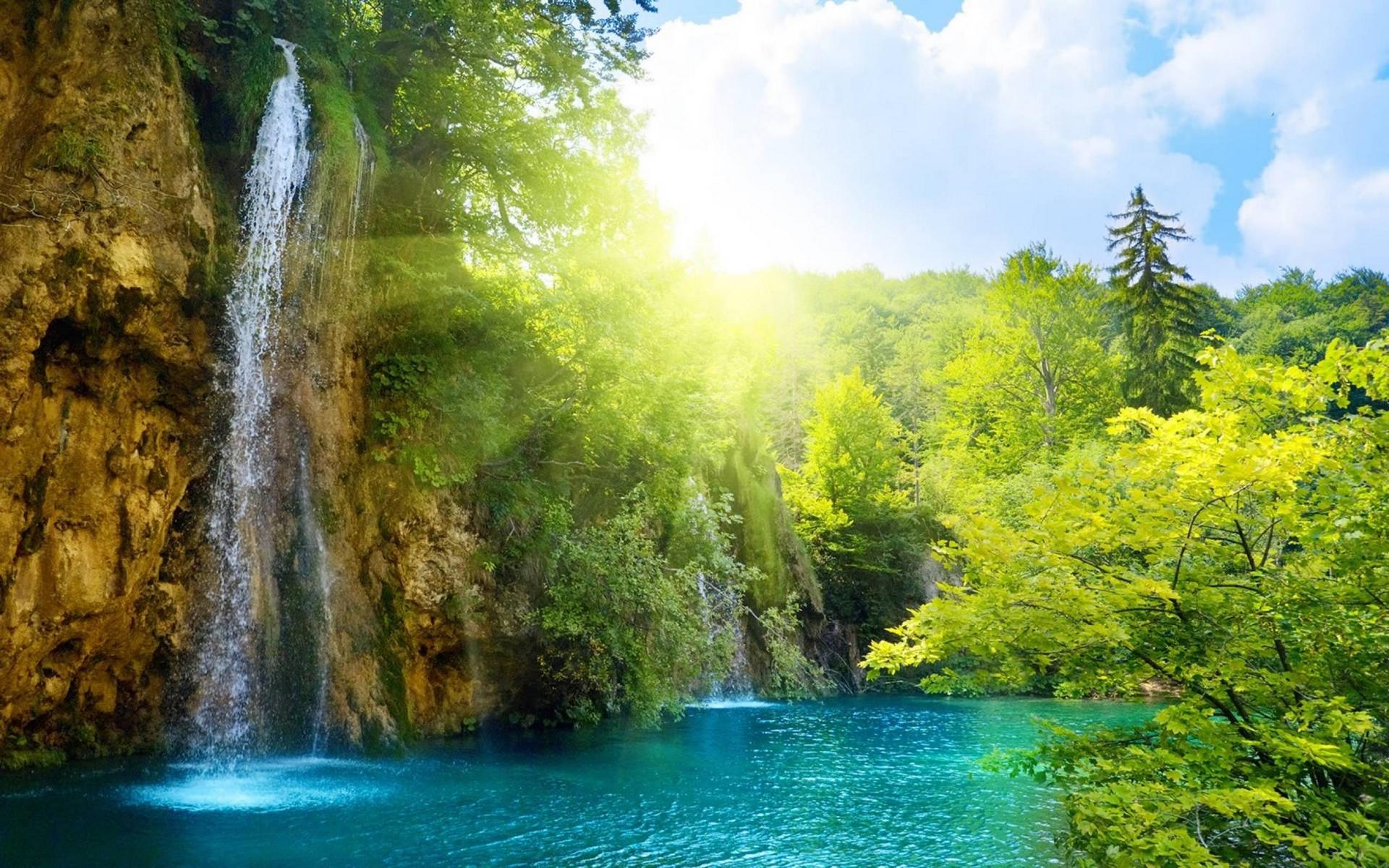 лето, горы, растительность