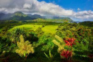 Бесплатные фото Кауаи,залив Ханалей,горы,море,поля,деревья,пейзаж