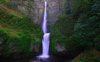 Бесплатные фото скала, камни, мох, растительность, водопад