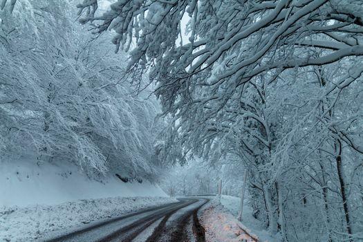 Photo free winter, snowy road, snow