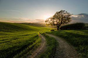 Фото бесплатно закат, поле, дорога