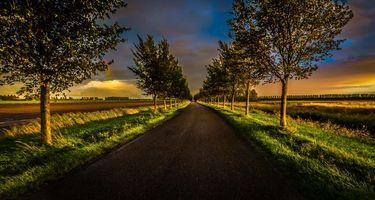 Бесплатные фото закат, поле, дорога, деревья, пейзаж