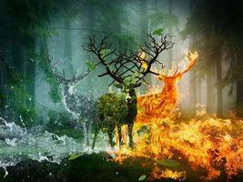 Бесплатные фото лес,деревья,олени,огонь,вода