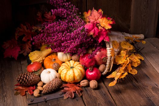 Photo free nuts, autumn composition of vegetables and fruits, cones