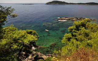 Заставки побережье, растительность, море