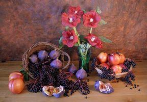 Бесплатные фото цветы, фтукты, натюрморт