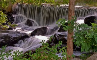 Фото бесплатно листва, деревья, водопад