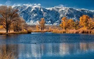 Бесплатные фото Горы, вода, лес, облака