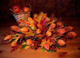 Бесплатные фото корзина, листья, яблоки, натюрморт