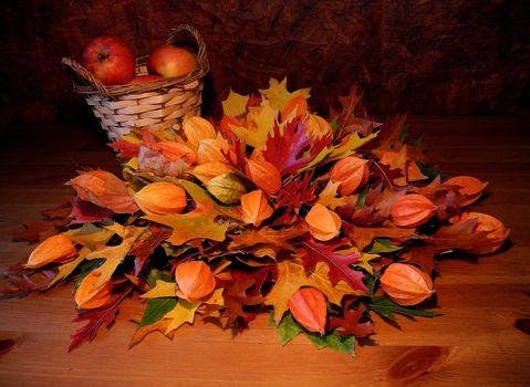 Фото бесплатно корзина, листья, яблоки