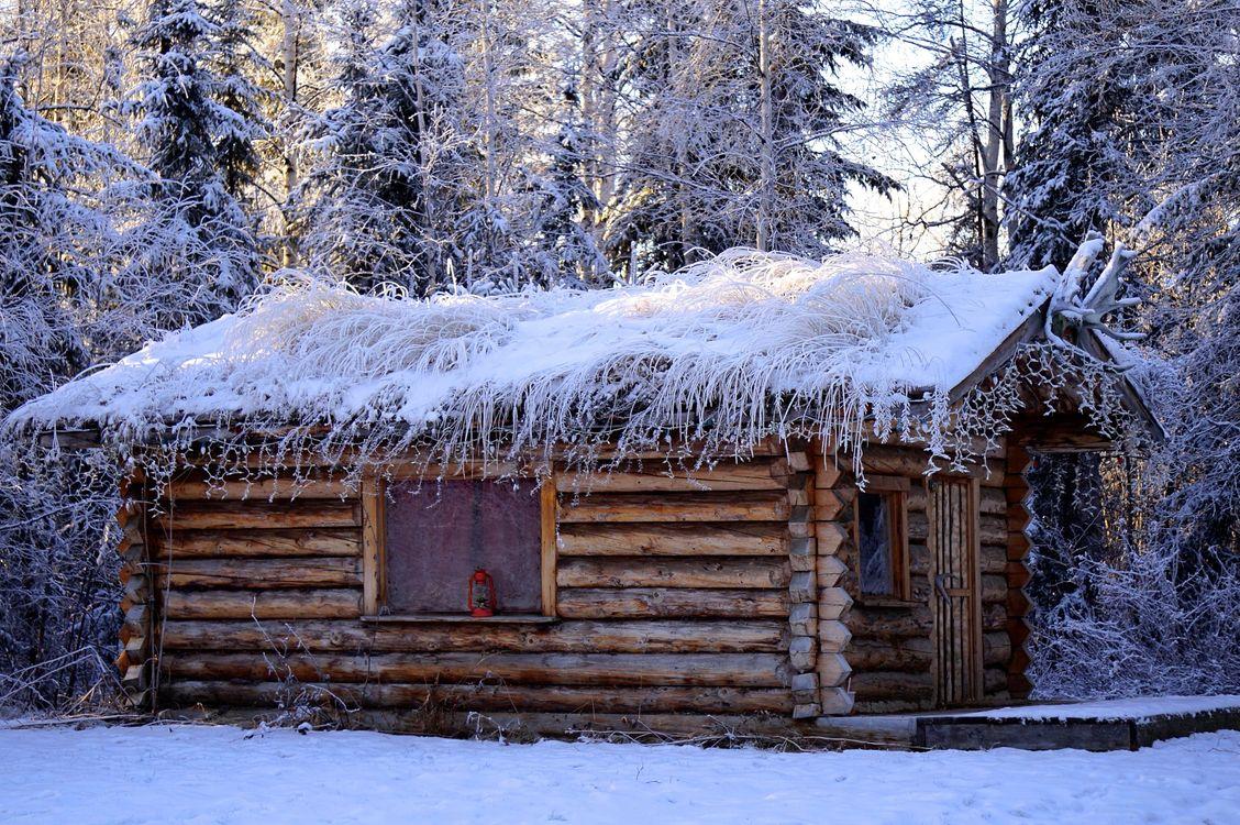 Фото бесплатно зима, лес, деревья, домик, пейзаж, пейзажи