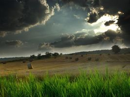 Бесплатные фото поле,тюки,салома,трава,небо,солнце,облака