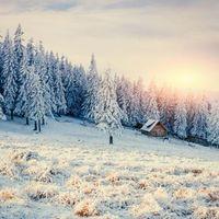 Бесплатные фото зима,снег,лес,деревья,домик,пейзаж