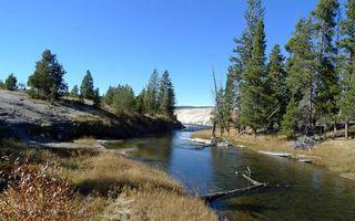 Фото бесплатно река, коряги, берега, холмы, трава, кустарник, деревья