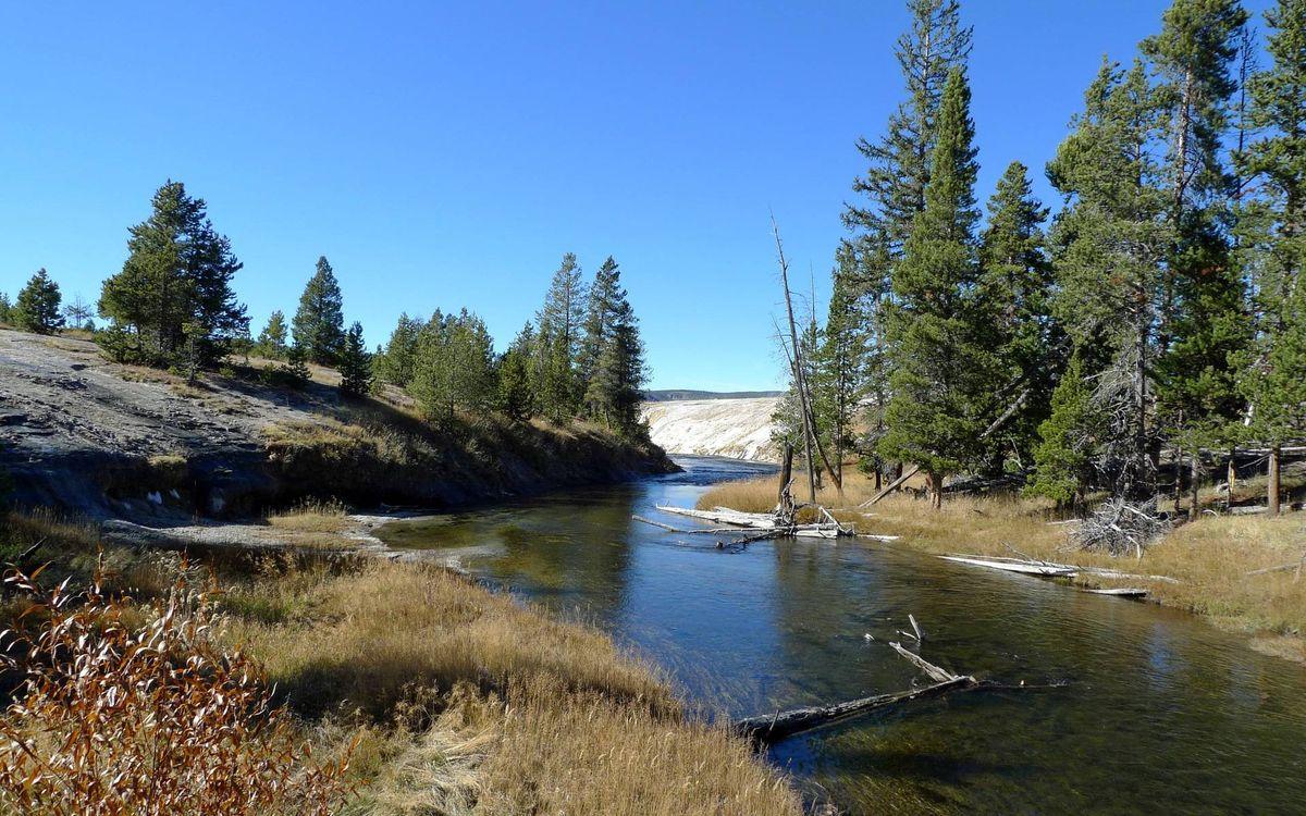 Фото бесплатно река, коряги, берега, холмы, трава, кустарник, деревья, природа