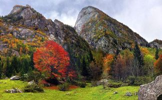 Photo free autumn, mountains, rocks