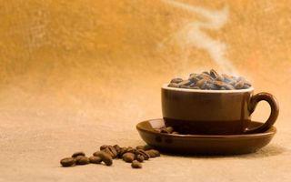 Заставки зерна, блюдце, кофе