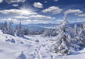 Бесплатные фото зима,снег,деревья,горы,следы,пейзаж