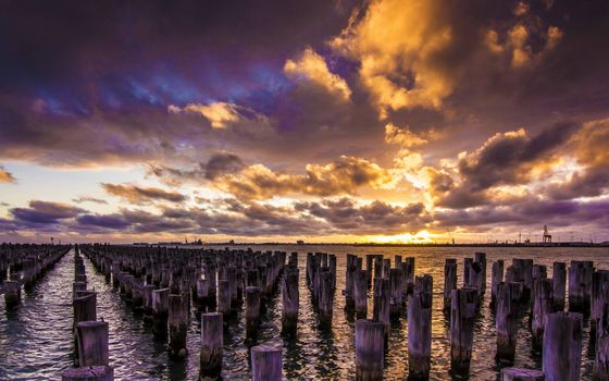 Фото бесплатно озеро, бревна, сваи