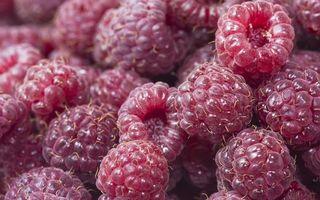 Фото бесплатно малина, ягода, горсть