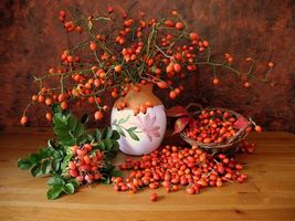 Фото бесплатно шиповник, ваза, натюрморт