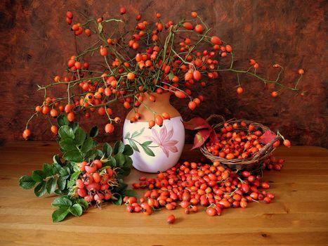 Бесплатные фото шиповник,ваза,натюрморт