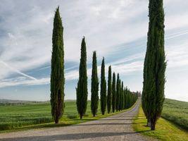 Бесплатные фото Италия,Тоскана,весна
