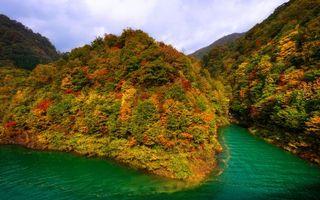 Фото бесплатно осень, озеро, зеленое, берег, горы, растительность, листья цветные
