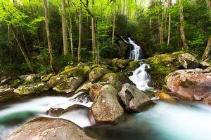 Фото бесплатно Национальный парк Грейт-Смоки, река, водопад