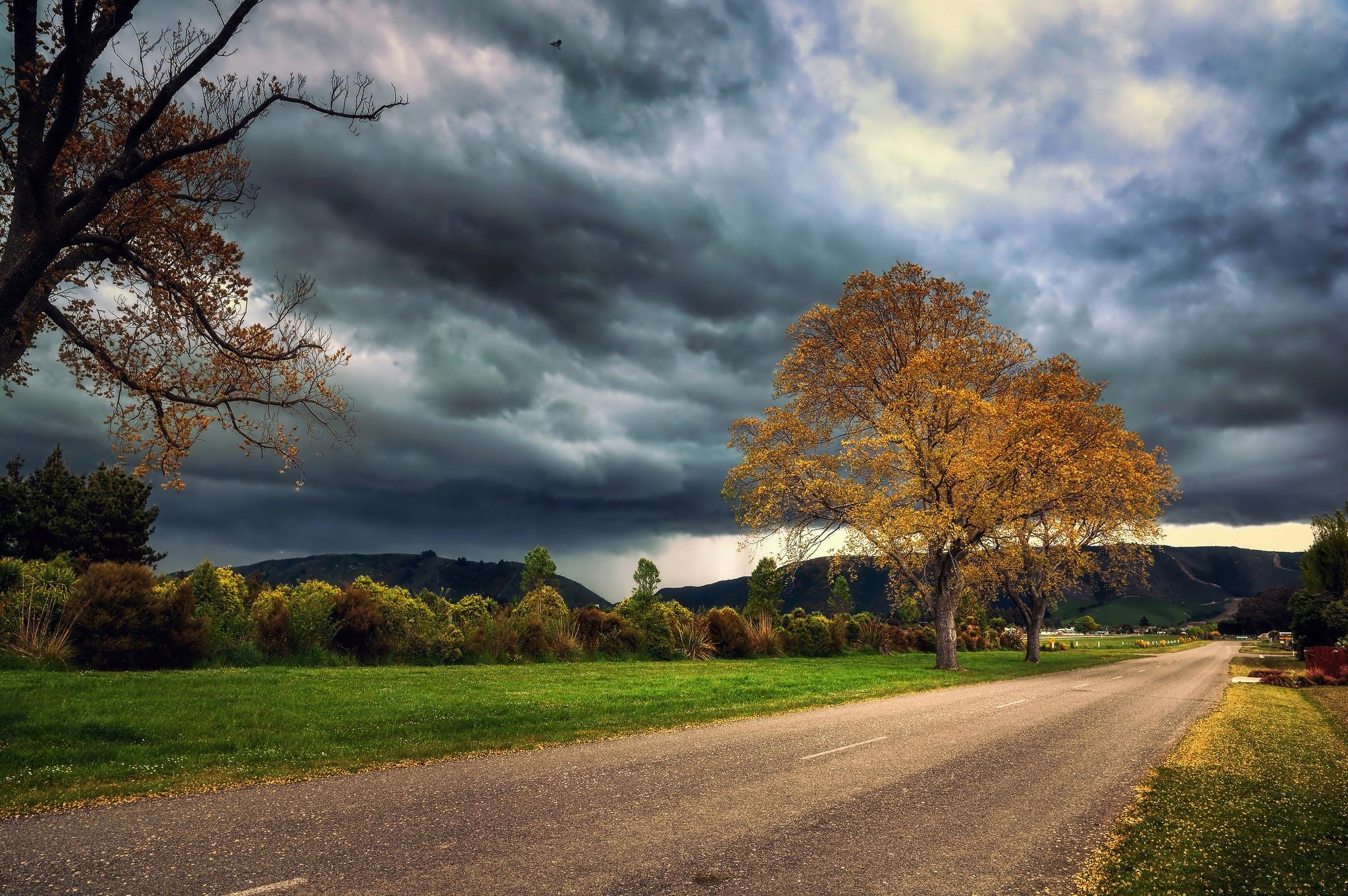 обои осень, тучи, дорога, дерево картинки фото