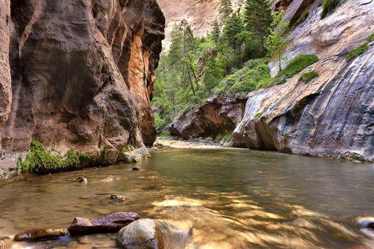 Заставки Zion National Park, Utah, Virgin River