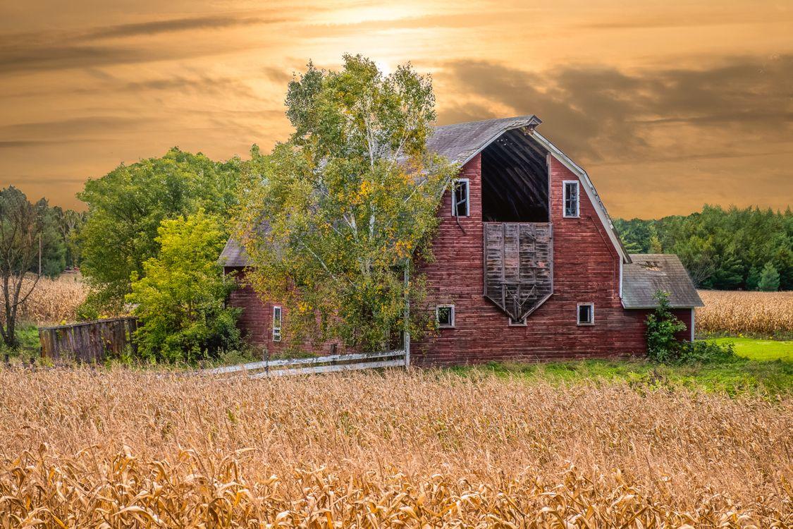 Фото бесплатно осень, поле, деревья, дом, закат, пейзаж, пейзажи