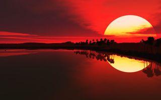 Бесплатные фото солнце,закат,небо,красное,пальмы,море,отражение