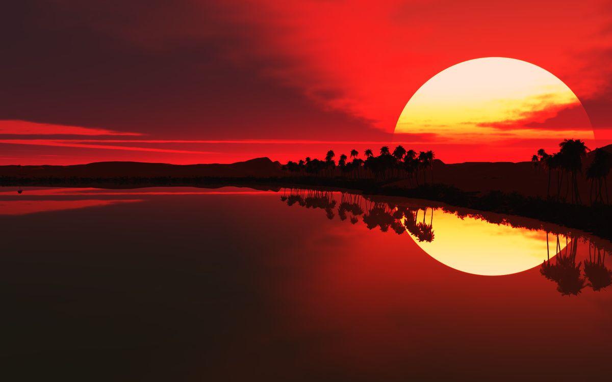 Фото бесплатно солнце, закат, небо, красное, пальмы, море, отражение, пейзажи