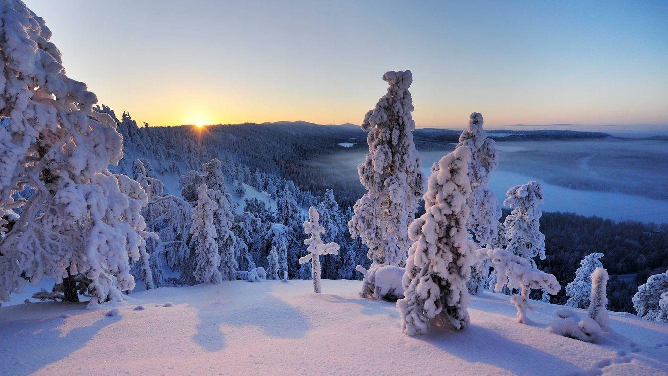 Фото бесплатно зимний пейзаж, елки, сугробы, восход солнца, пейзажи