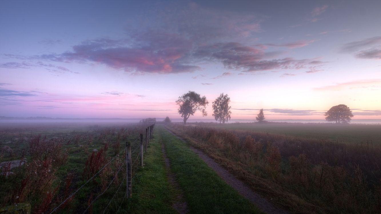 Free screensaver sunset field
