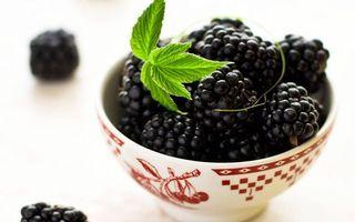 Бесплатные фото ягода,ежевика,листья,посуда,фон белый