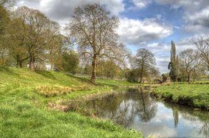 Фото бесплатно река, мост, деревья