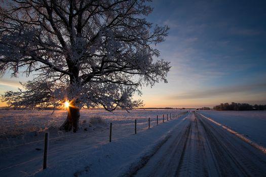 Фото бесплатно Эстергетланд, Швеция, закат