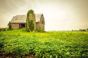 Заставки поле, дом, тучи, пейзаж