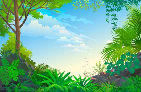 Фото бесплатно деревья, небо, природа