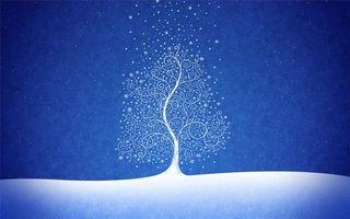 Бесплатные фото заставка,снег,дерево,узор,небо,снежинки