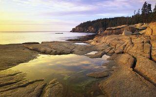 Бесплатные фото берег,камни,деревья,море,горизонт,небо