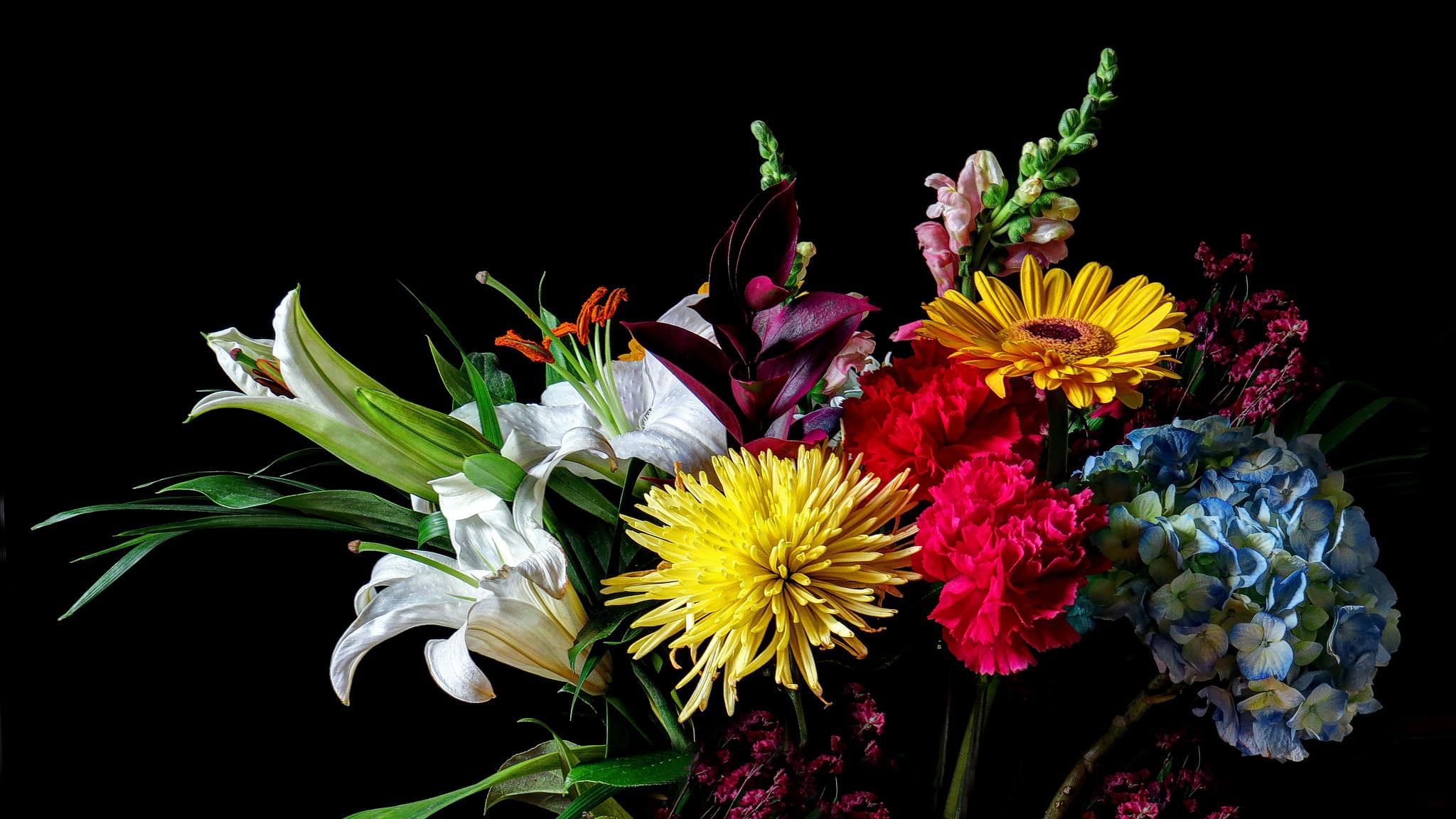 обои цветы, букет, флора картинки фото