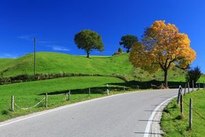 Бесплатные фото осень,поле,деревья,дорога,холмы,пейзаж