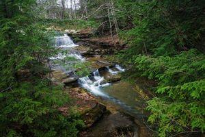 Бесплатные фото лес,деревья,река,природа