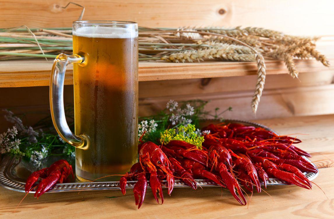 Фото бесплатно кружка, пиво, напиток, раки, креветки, рыба, продукты, напитки