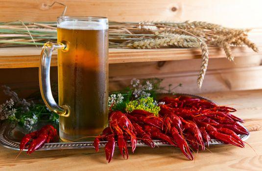Бесплатные фото кружка,пиво,напиток,раки,креветки,рыба,продукты